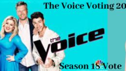 The Voice Voting